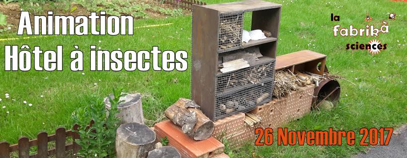 h tel insectes education au d veloppement durable. Black Bedroom Furniture Sets. Home Design Ideas